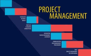 feature_msbapm_projectmanagement
